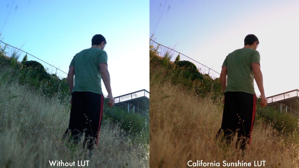 California Sunshine